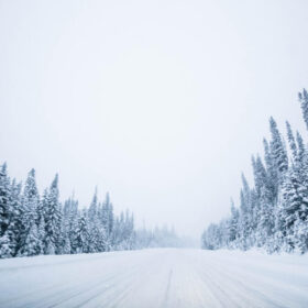 An icy winter road in a forest